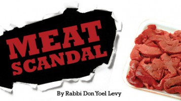 Meat Scandal