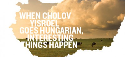 When Cholov Yisroel Goes Hungarian Interesting Things Happen