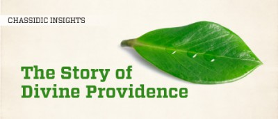 The Story of Divine Providence