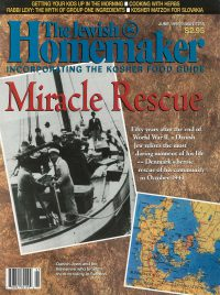 """Front Cover of """"The Jewish Homemaker"""" Magazine - Miracle Rescue - June 1995"""