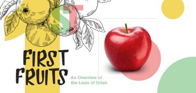 First Fruits: An Overview of the Laws of Orlah