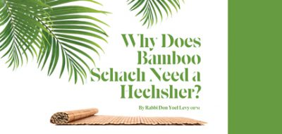 """Remembering Rabbi Don Yoel Levy OB""""M: Why Does Bamboo Schach Need a Hechsher?"""