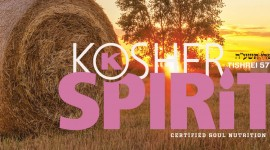 kosher-spirit-32