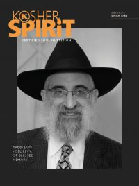 Rabbi Don Yoel Levy Memorial Edition